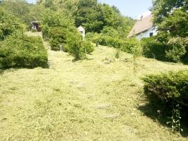 Bozótirtás, telektisztítás, kertrendezés
